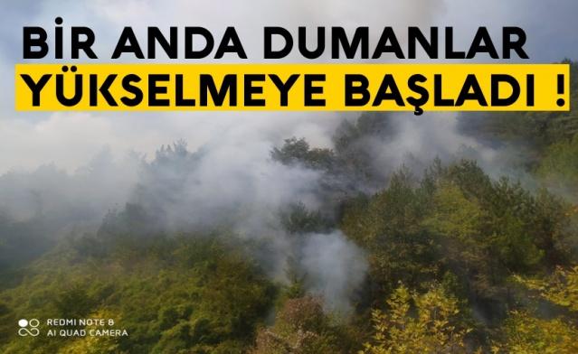 Sinop Boyabat yolunda orman yangını !  19.09.2020 Cumartesi günü Sinop Boyabat Karayolu Ormanlık alanda yangın çıktı.