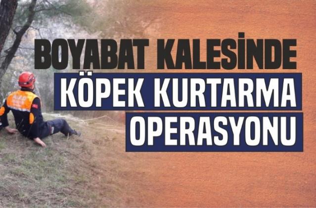 Boyabat Kalesi'nde Köpek Kurtarma Operasyonu   27.03.2019 dün Boyabat Kalesi'nde Sinop AFAD Ekipleri tarafından köpek kurtarma operasyonu gerçekleştirildi.  Edinilen bilgiye göre Kalebağı yolu üzerinde uçurumda mahsur kalan 2 köpeği bölgedeki vatandaşların farkederek Boyabat İtfaiye Ekiplerine haber verdi.