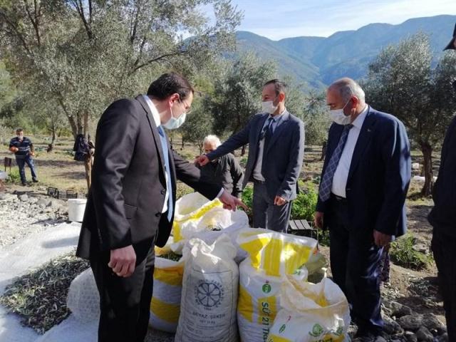 İlçe Kaykamı Hasan Hüsnü Türker beraberindeki heyet ile birlikte, Saraydüzü Yalmansaray Köyü'nde bulunan Veysel ve Saime Kara ailesinin çeltik hasat çalışmalarına katıldı.