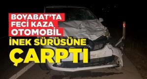 Boyabat'ta kaza ,Otomobil ile inek sürüsüne çarptı
