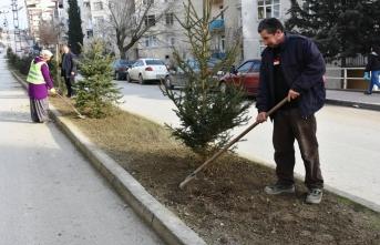 Boyabat Belediyesi Mahalleleri Ağaçlandırıyor