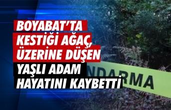 Boyabat'ta ağaç keserken talihsiz bir kaza geçiren Recep Bostancı hayatını kaybetti