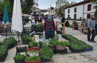 Boyabat ilçesinde çiftçiler tarafından yetiştirilen sebze fidelerinin satışları başladı.