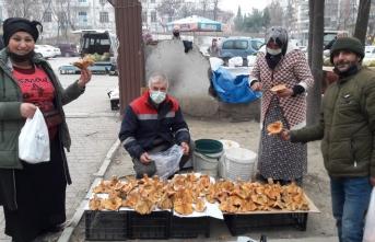 Boyabat'ta kanlıca mantarı pazara indi fiyatı dudak uçuklattı !