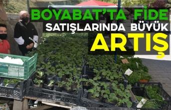 Pandemi Boyabat'ta sebze fidesi satışlarını patlattı