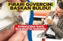 Ankara'dan kaçtı, Boyabat'ta Başkana...