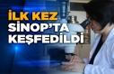 Bilim dünyası için bir ilk, Sinop'ta keşfedildi