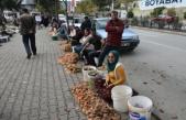 Boyabat Mantar Pazarı Canlandı,Fiyatlar Düştü