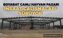 Boyabat Canlı Hayvan Pazarı inşaatı hızla yükseliyor