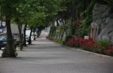 Karadeniz'de en risksiz il bu hafta da Sinop