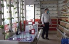 Köfte dükkanında marul yetiştiriyor, müşteriler dekor sanıyor