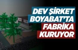 Dev Firma Boyabat'a Fabrika Kuruyor