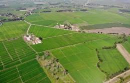 """""""2019 Yılında Sinop'ta 1.500 Hektar Arazi Toplulaştırıldı"""""""