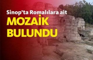 "Sinop'ta ""zengin Romalılara"" ait mozaikler..."