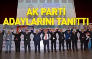 AK Parti Sinop'ta başkan adaylarını tanıttı