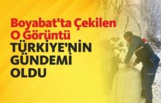 Boyabat'ta Çekilen O Kare Türkiye'nin Gündemi...