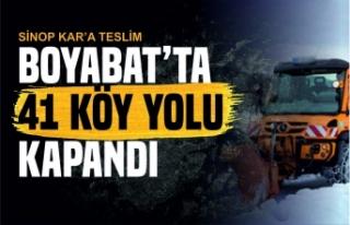Kar, Sinop'ta 114 köy yolunu ulaşıma kapattı