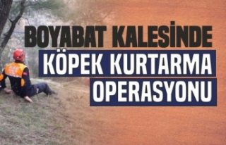 Boyabat Kalesi'nde Köpek Kurtarma Operasyonu