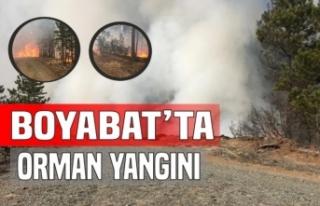 Kovaçayır'da Orman Yangını