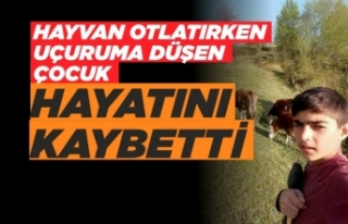 Sinop'ta uçuruma düşen çocuk öldü