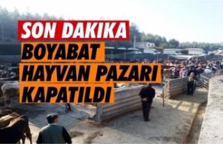 Boyabat Hayvan Pazarı Hastalık Sebebiyle Kapatıldı