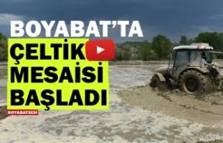 Boyabat'ta 2020 yılı çeltik ekimi devam ediyor