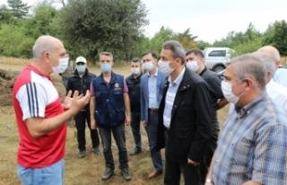 Sinop ValisiKaraömeroğlu, Yangın Alanında