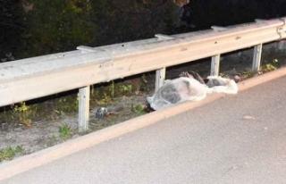 Boyabat Sinop yolunda trafik kazası 1 kişi hayatını...