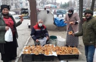 Boyabat'ta kanlıca mantarı pazara indi fiyatı...