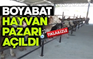 Boyabat'ta YeniCanlı Hayvan Pazarı açıldı