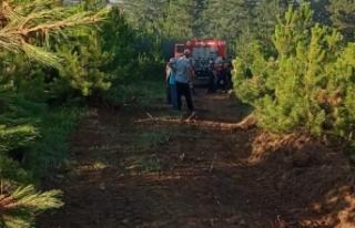 Boyabat Bürüm Köyü'nde çıkan orman yangını...