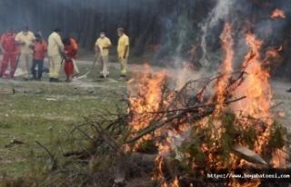 Boyabat'ta ormanlık alanlarda ateş yakmak yasaklandı