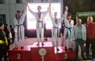 Boyabatlı Taekwandocu gençler Zafer Kupasında büyük...