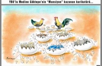 Denizli'den Boyabat'a Karikatür Ödülü