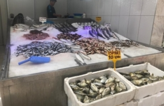 Sinop'ta korona virüs balık fiyatlarını düşürdü