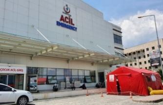 Kastamonu'da kenenin ısırdığı 7 kişi tedavi altına alındı