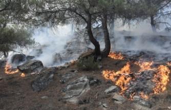 Boyabat Koçak Köyü mevkisindeki orman yangını kontrol altına alındı