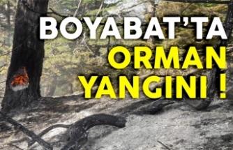 Boyabat'ta meydana gelen orman yangını kontrol altına alındı