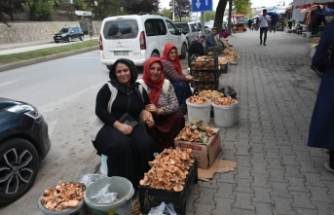 Boyabat Köy pazarında her ürün günlük, doğal ve yerli