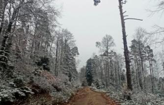 Ayancık'ın yüksek kesimlerine mevsimin ilk karı yağdı