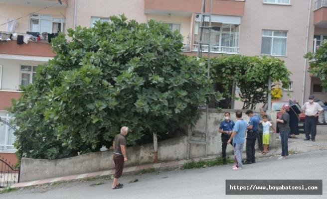 İncir ağacından düşen yaşlı adam yaralandı