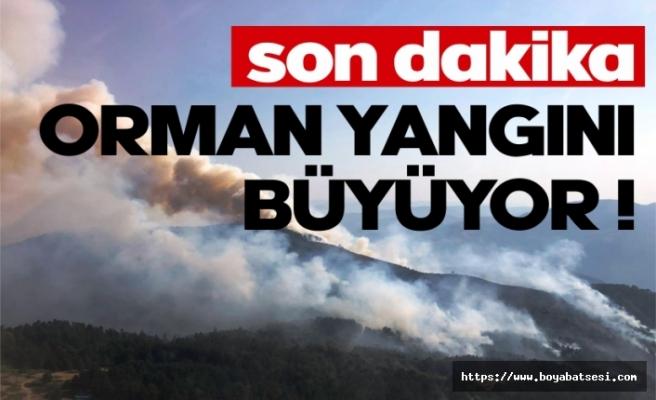 Orman yangını büyüyor !