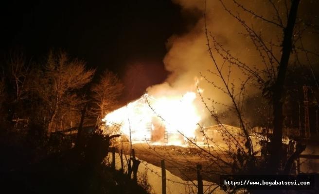 Ahır yangını: 12 büyükbaş hayvan telef oldu