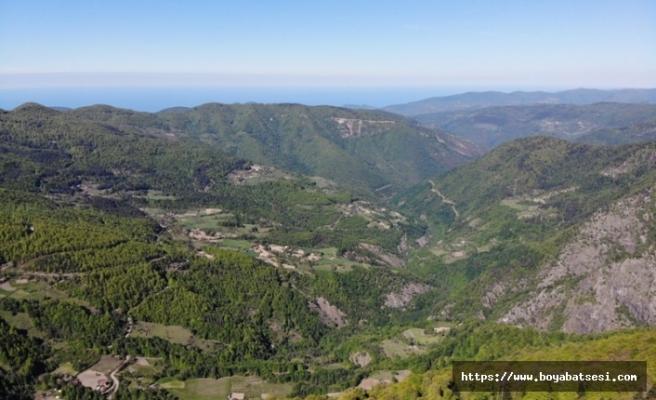 İki ilde ormanlık alanda mangal yapılması yasaklandı