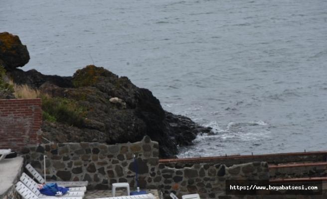 Sinop'ta 1 kişi denizde boğuldu
