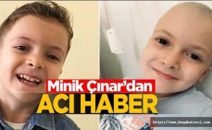 Sinop Çınar'ını kaybetti