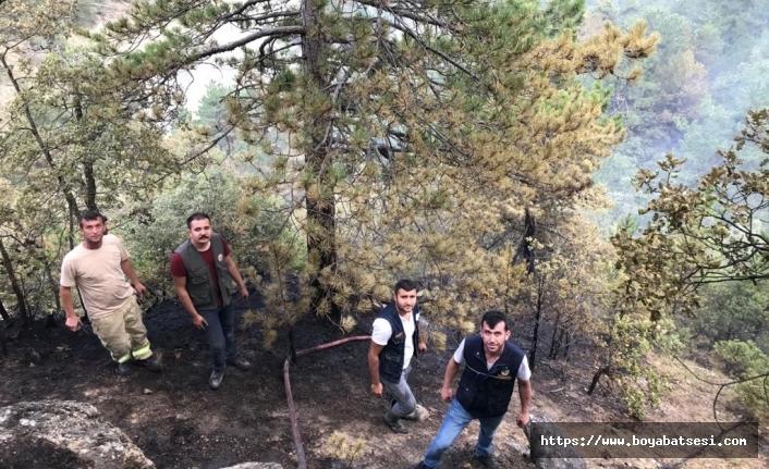Boyabat'ta çıkan orman yangınında 30 hektarlık alan zarar gördü.