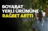 Boyabat'ın Yerli Ürününe Rağbet Artıyor