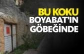 Boyabat Adnan Menderes Bulvarındaki koku vatandaşları rahatsız ediyor