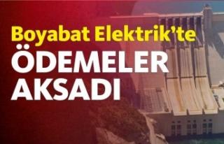 Boyabat Elektrik'te 900 Milyon dolarlık borç!